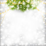 O cartão de Natal com ramo do abeto decorou a festão dos grânulos do ouro Fotografia de Stock