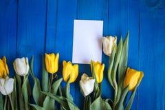 O cartão de papel do flowersand da tulipa da mola na tabela de madeira azul de cima no plano coloca o estilo Fotos de Stock Royalty Free