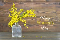 O cartão do dia das mulheres felizes com mimosa floresce na garrafa Fotos de Stock
