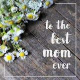 O cartão feliz do dia das mães ou das mulheres com camomiles do campo sobre o fundo e o branco de madeira rústicos cinzentos escu fotos de stock