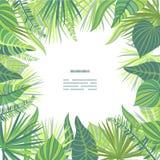 O cartão na selva tropical sae do tema ilustração stock