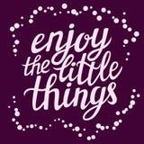 O cartaz da tipografia da rotulação da mão 'aprecia as coisas pequenas' Imagem de Stock Royalty Free