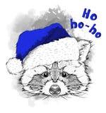 O cartaz do Natal com o retrato do guaxinim da imagem no chapéu do ` s de Santa Ilustração do vetor da tração da mão ilustração do vetor