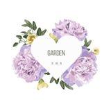 O cartão luxuoso com vintage floresce com coração e fundo branco Imagens de Stock Royalty Free