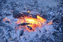O carvão de madeira queima-se no fogo imagens de stock royalty free