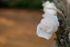 O casamento branco levantou-se Fotos de Stock Royalty Free