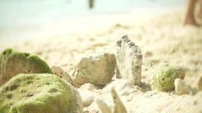 O castelo da areia na praia, uma fam?lia irreconhec?vel faz um castelo da areia em uma praia p?blica 4k, borr?o, lento-movimento video estoque