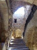 O castelo de Ajloun Foto de Stock