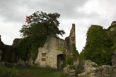 O castelo de Dorneck é um castelo na municipalidade de Dornach Imagem de Stock