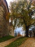 O castelo de Ljubljana fotografia de stock