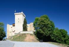 Castelo medieval de Phoebus em Mauvezin fotografia de stock