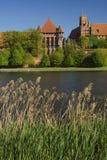 O castelo Malbork Foto de Stock Royalty Free