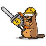 O castor guarda a serra de cadeia Foto de Stock