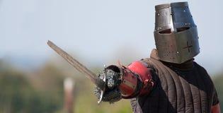 O cavaleiro Imagem de Stock Royalty Free