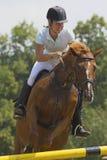 O cavaleiro da mulher na raça equestre salta Foto de Stock