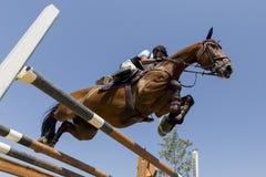 O cavaleiro desconhecido em um cavalo durante a competição combina a montada circularmente Imagens de Stock