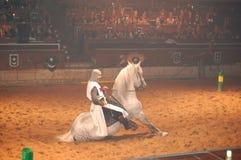 O cavaleiro medieval mostra o treinamento do cavalo Imagens de Stock Royalty Free