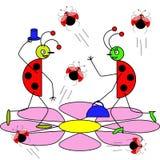 O cavalheiro e os joaninhas da senhora encontraram-se em uma grande flor Imagem de Stock