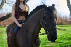 O cavalo é mulher selada Foto de Stock Royalty Free