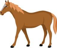 O cavalo de passeio de Brown ilustração do vetor