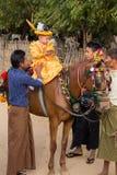 O cavalo decorado, o búfalo e os povos locais que participaram na doação canalizaram a cerimônia em Bagan Myanmar, Burma Fotografia de Stock