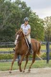 O cavalo e o cavaleiro gerenciem um canto em um galope fotos de stock royalty free