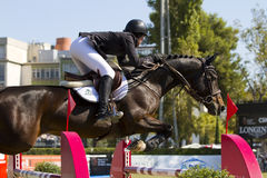 O cavalo que salta - Caitlin Ziegler Fotografia de Stock Royalty Free