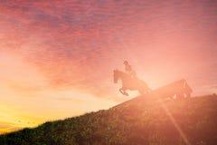 O cavalo que salta sobre um obstáculo fotografia de stock royalty free