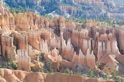 O cayon de Bryce incandesce na luz do amanhecer Fotos de Stock
