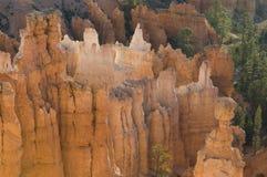 O cayon de Bryce incandesce na luz do amanhecer Imagem de Stock Royalty Free