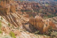 O cayon de Bryce incandesce na luz do amanhecer Foto de Stock Royalty Free