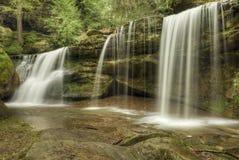 O cedro cai Ohio foto de stock