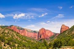 O cedro quebra o parque nacional foto de stock