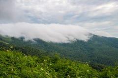 O cenário bonito das montanhas fotos de stock