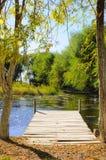O cenário do outono perto de um lago com amarelo sae em árvores na queda Imagens de Stock