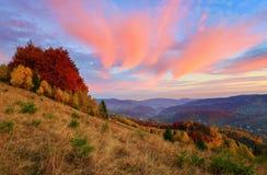 O cenário fantástico à paisagem do outono dos montes fotos de stock