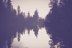 O cenário nevoento do lago foto de stock