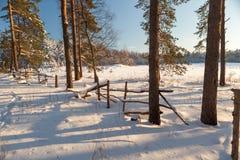O cerco quebrado no limiar da madeira do inverno. Fotos de Stock