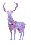 O cervo roxo da aquarela em um fundo branco com roxo espirra Cervos do inverno Imagens de Stock