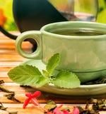 O chá com meios da hortelã refresca a bebida e o rafrescamento imagens de stock royalty free