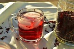 O chá de gelo vermelho natural feito do hibiscus floresce as pétalas chamadas Fleur de Jamaica em México imagem de stock