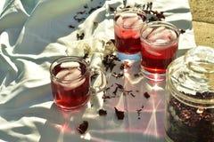 O chá de gelo vermelho natural feito do hibiscus floresce as pétalas chamadas Fleur de Jamaica em México fotografia de stock royalty free