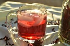 O chá de gelo vermelho natural feito do hibiscus floresce as pétalas chamadas Fleur de Jamaica em México foto de stock royalty free