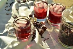 O chá de gelo vermelho natural feito do hibiscus floresce as pétalas chamadas Fleur de Jamaica em México foto de stock
