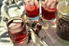 O chá de gelo vermelho natural feito do hibiscus floresce as pétalas chamadas Fleur de Jamaica em México imagens de stock