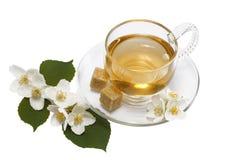 O chá do jasmim no copo e no jasmim de vidro floresce no fundo isolado branco Imagens de Stock