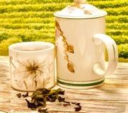 O chá em pátios representa o tempo e o café da ruptura fotos de stock