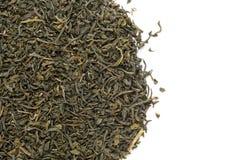 O chá verde orgânico (sinensis da camélia) secou as folhas longas Imagens de Stock Royalty Free