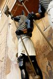 O chacal enfrentou o deus, Anubis foto de stock royalty free
