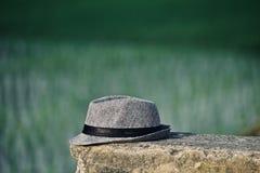 O chapéu de vaqueiro isolou o objeto com a fotografia verde do fundo Imagens de Stock Royalty Free